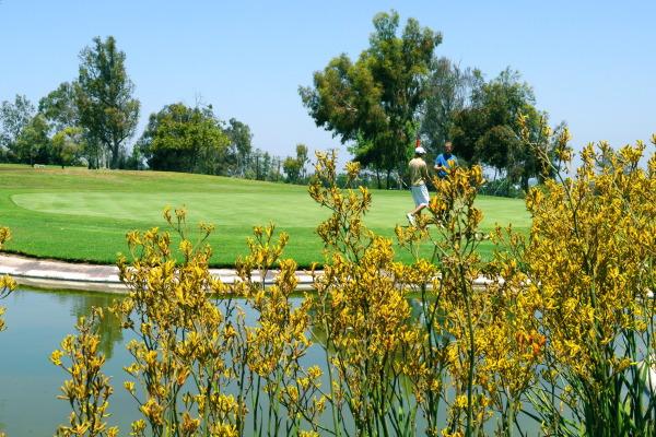 Los Serranos Golf